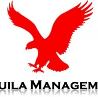 Aquila Management Consulting