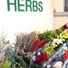 Herbs Barcelona S.L.