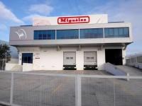 Miguelez-Condutores Electricos Lda